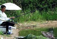 秋季釣魚,魚兒不吃餌怎麼辦?魚不開口一般是這三種情況