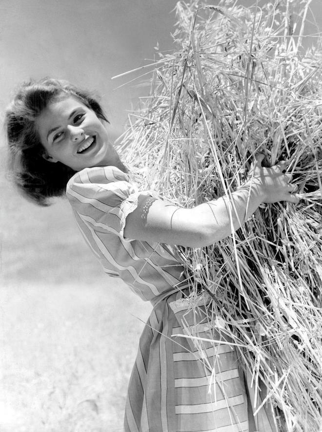 老照片:好萊塢黃金年代的傳奇女星英格麗·褒曼