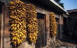 山裡人最美的秋色,石板房上涼晒著收穫