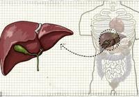 年前要養肝,這四個穴位每天按一按,還你一個好肝臟!