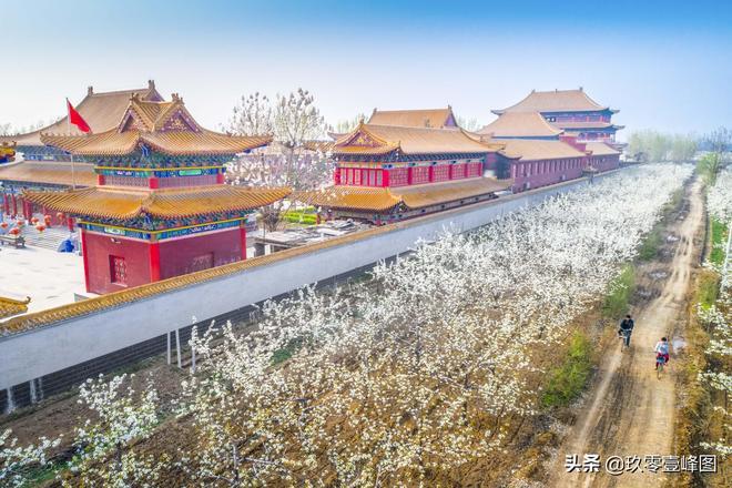晉州即將進入梨花的世界、梨花的海洋,來晉州過一個不一樣的春天