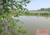 東坡區醴泉河流域汙染治理成效顯著