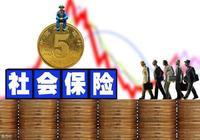 人口老齡化加劇,未來中國企業社保繳費該如何確定?