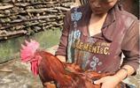 直擊電子商務給農村女人帶來的影響,有人靠此致富,有人天天剁手