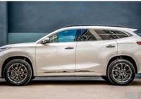 這款國產車徹底火了,國六排放標準,十二萬造價開出五十萬檔次!