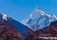 西藏波密最值得去的7個地方,大部分都是中國之最