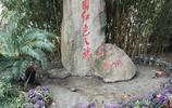 遊嘉興南湖