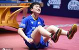 中乒賽張本智和晉級四強,一屁股坐在地上臉上樂開了花