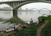 南充嘉陵江能釣魚嗎?