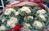 帶你看菜:菠菜價格飆升,究竟為何