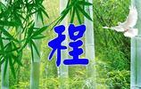 走進大自然,綠竹護目養眼,100張姓氏壁紙(有定製),洗滌心靈