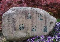 上海市嘉定區嘉定紫藤園隨拍簡記攝影旅行小貼士