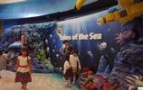 """泰國曼谷網紅水族館,遊客戲稱""""東南亞最大魚缸"""",旺季一票難求"""