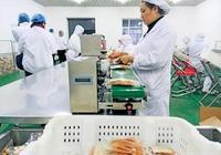 雙鴨山:大力推進轉型創業