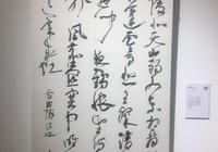 福建省書法家協會副主席李木教中書協草書委員作品展的作品分析