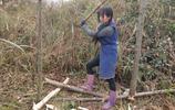 """父親致殘95後姑娘扛起一個家 背磚劈柴扛大樹走紅被稱""""女漢子"""""""