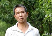 他是種植李子有18年曆史的農村大叔,希望家鄉李子賣到全國各地