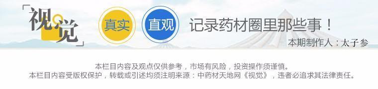 《視覺》第5期:亳州白芷產地調研