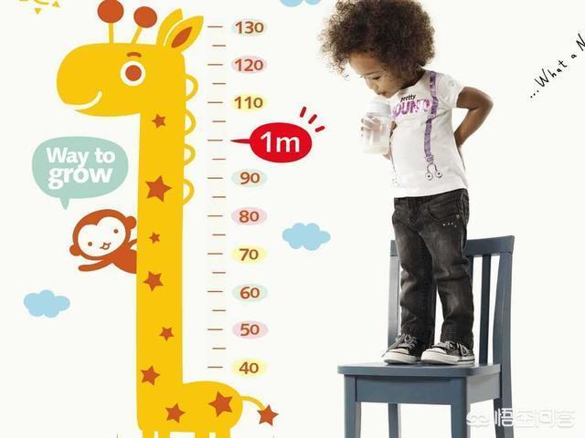寶寶馬上就要1歲8個月了,身高只有81cm,每次出去都覺得比同齡小朋友矮該怎麼辦?