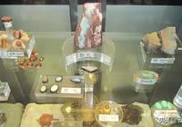 件件皆珍寶!帶大家看看中國地質博物館都收藏了哪些石頭?