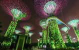 新加坡旅遊景點