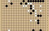 動圖棋譜-日本總冠軍戰 藤澤裡菜爆冷勝張栩