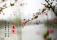 今日春分,這些春季健康常識你知道嗎?
