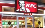 原來肯德基的漢堡都是假漢堡?揭露外國人去肯德基從不點漢堡的真相