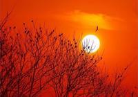 一個人漂泊在外,面對夕陽你會想家嗎?晚唐一首古詩無限傷感