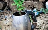 山村農戶養花的花盆很奇特,破罐爛盆都上了,無意中秀出一種美