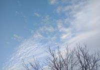 【永檢文苑】守護 屬於我的那一片天空
