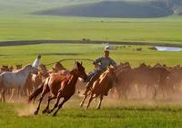 呼倫貝爾旅遊攻略|呼倫貝爾大草原包車呼倫貝爾大草原