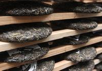普洱熟茶四十年——普洱熟茶的後發酵工藝