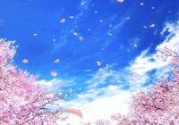 櫻花很美,但是櫻花美甲更美!
