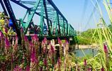 風光攝影 二戰橋
