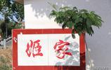 組圖:煙臺萊州一個省級傳統村落的實景,名叫紫羅姬家