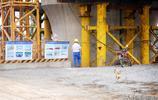 鄭濟高鐵施工現場實拍,這裡咋就沒有青年工人,老李說出了實情