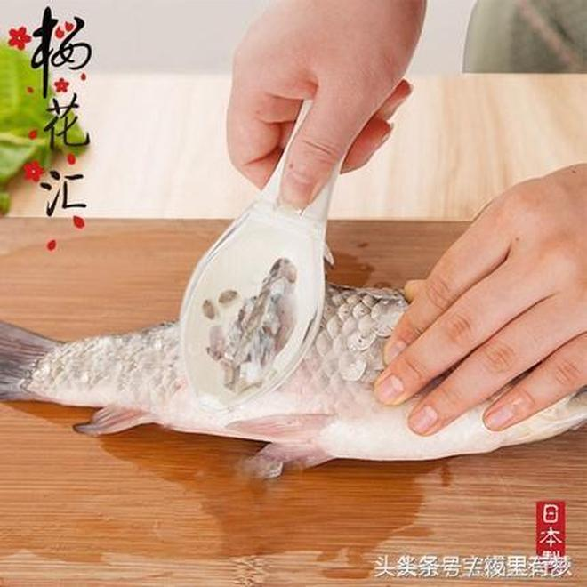很多人都把魚身上5寶丟掉了,這5寶常吃身體好!
