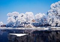 一串串晶瑩似玉的冰花,十里長堤頓時成了玲瓏剔透玉樹銀枝的世界