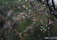 上句:秋風送雨江面寂(平平仄仄平平仄),求下句