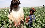 世界上最貧窮的國家之一,卻在經營這世界上最暴力的毒品生意