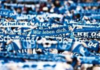 動態:沙爾克04位列歐洲俱樂部價值排行榜第14名
