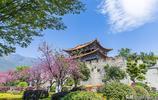 中國雲南有座古城,曾是東南亞第一大古都,如今成為繁華商業街