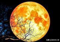 月色中的故人——傷情李煜