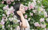 薔薇花開,美人在旁
