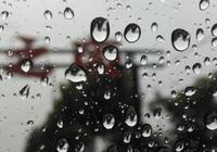 芒種:芒種遇雨