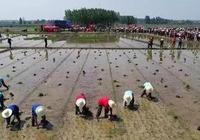 光山縣舉辦司馬光農耕文化節