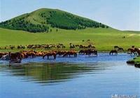 張北草原和烏蘭布統草原哪個好玩?