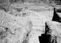 內蒙通遼出土遼代貴族墓,一具睡美人沉寂千年,珠寶散落墓室