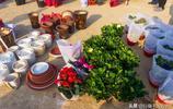 濟南柳埠大集上的花卉,品種齊全價格實惠